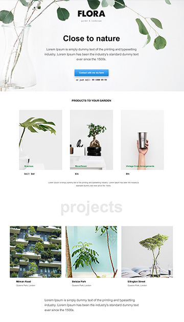 Moon responsive muse templates for photographers and designers apollo 7 pronofoot35fo Images